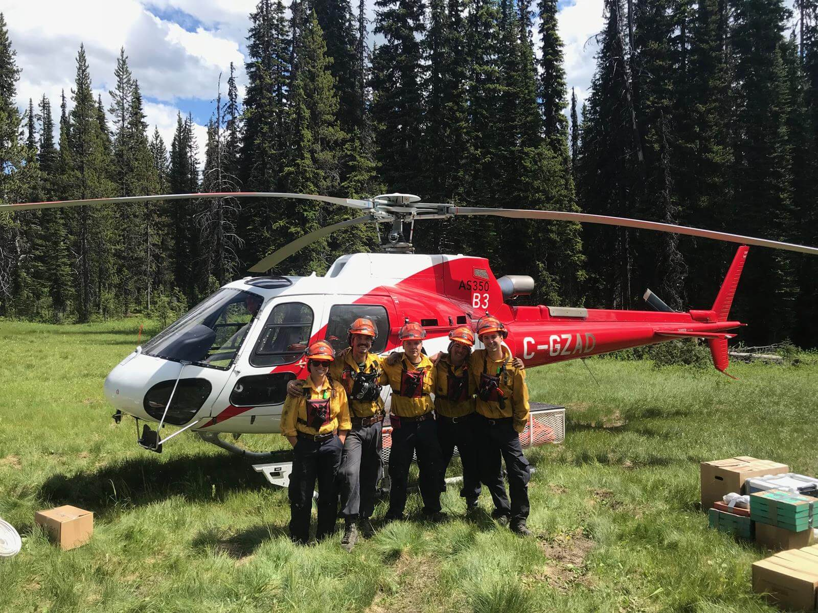 forest-wildfire-services-5
