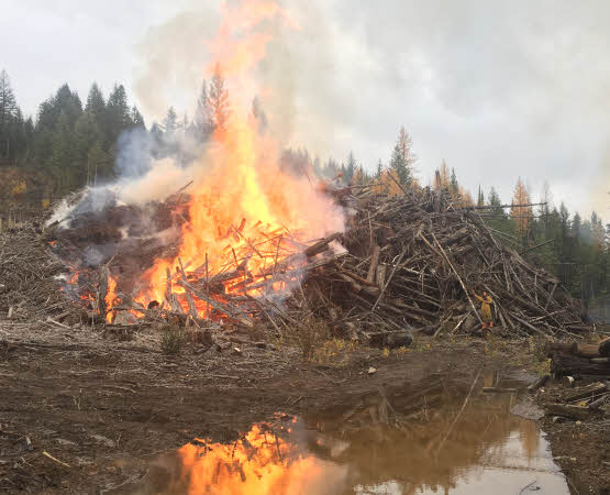 Pile Burning And Chipping Services