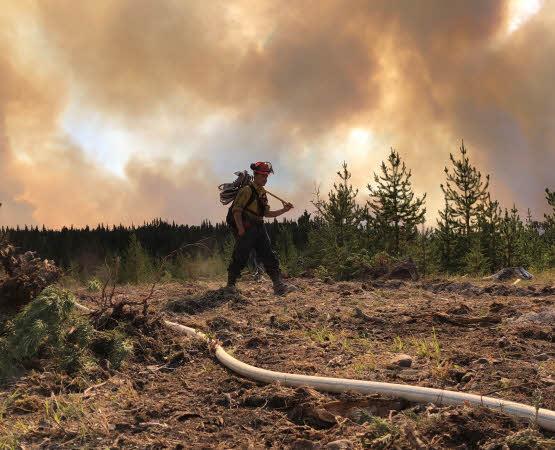 Wildfire Suppression Services